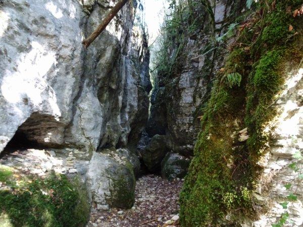 Balade dans le canyon des gueulards (Dép:26)