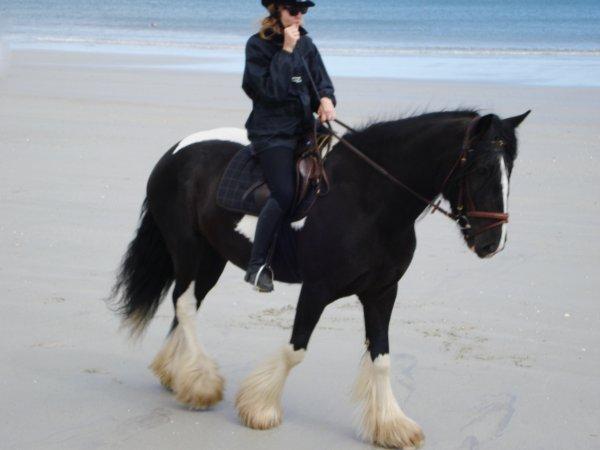 Twilliam, première fois à la plage :)  Heureusement que Khamel était là pour le rassurer!