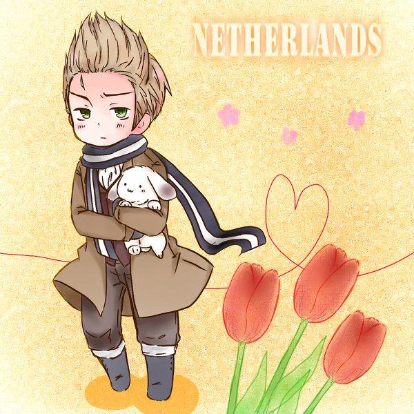 """Fan-arts """"Netherlands"""""""