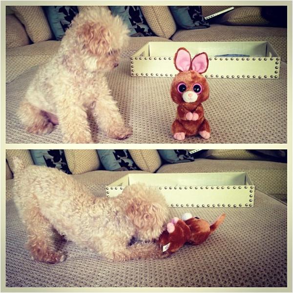× Ashley souhaite Joyeuses Pâques via son Instagram ! :-)