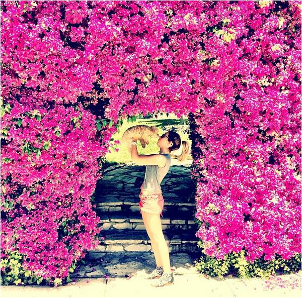 """× """"Home sweet home"""" - photo publiée par Ashley"""