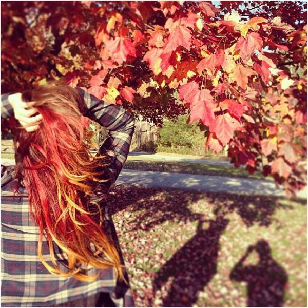 """× """"Mes cheveux ont enfin trouvé leur maison"""" - Vanessa sur Tumblr"""