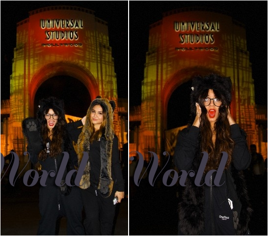 × Horror nights avec Stella