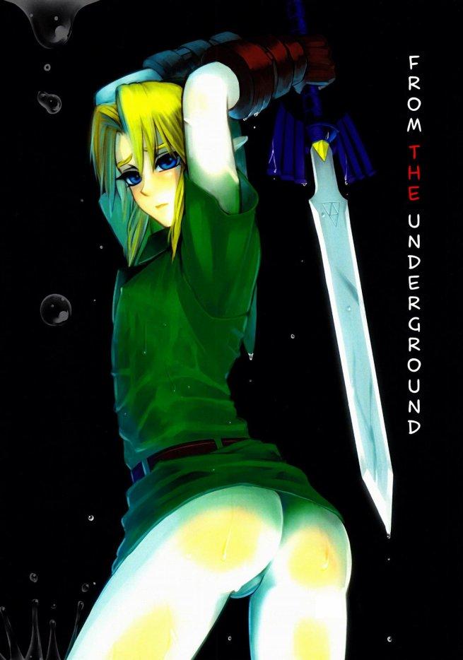 Doujin Link x Dark Link : From The Underground ***