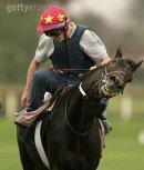 Photo de chevaux-de-course-61