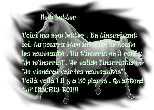 ๑ New Letter ♥