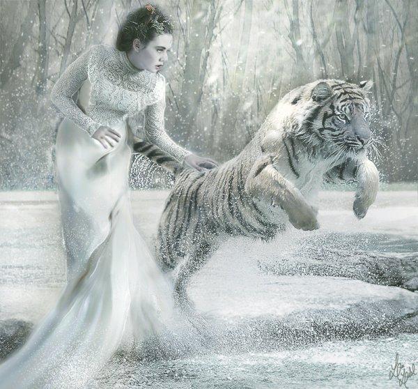 Ce sujet des images de moi une fille et un tigre féroce qui reflètent la fille Torod Hiwant