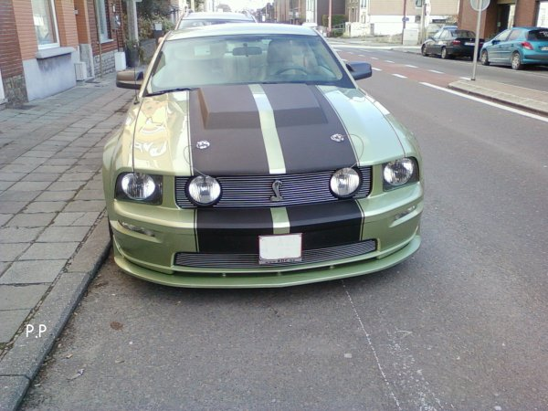 Ford Mustang Shelby GT !