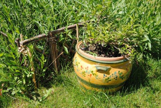 journee des jardins la palette de couleurs le pot de fleur. Black Bedroom Furniture Sets. Home Design Ideas