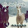 Horses-Lovely