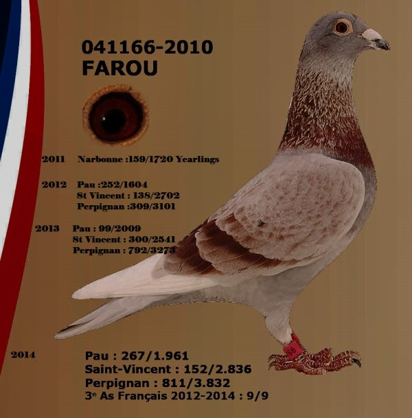 FAROU 3° Top France 2012/2014 Europa le  041166/2010     10 prix de 11 inter