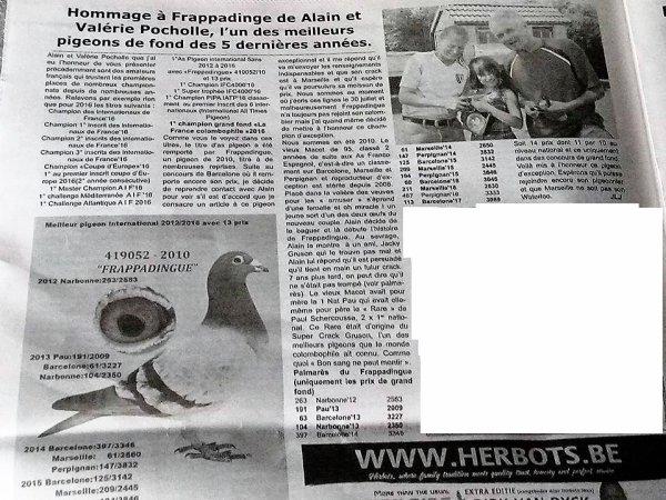 Superbe article presse colombophile Belge !.Il n'y a pas que les pigeons!.
