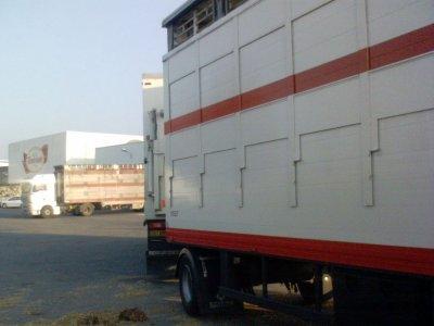 Man TGA 18.480 de Transbocage, une société basée à Carville (14).