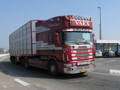 Scania Longline 164L 580 des transports VAEX de Reek (NL).