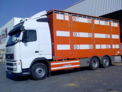 Quelques camions du parc des transports Ayrault de Cerizay (79).