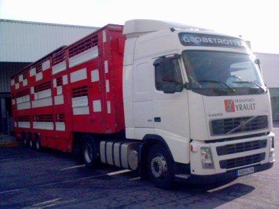 Un Volvo FH12 460 qui réalisait le même type de déchargement.