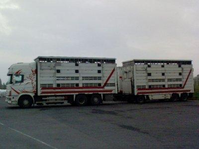 Un Scania 164L 480 acquis d'occasion par le transporteur Braquehais (76).