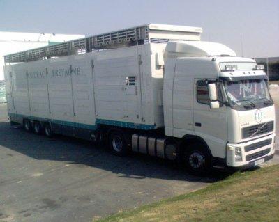 Un ensemble des transports Le Ténaff de Loudéac (22).