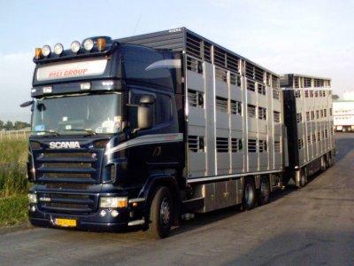 Un Scania R480 de la grosse société Pali Group.