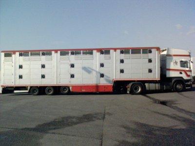 Un transporteur néerlandais, il s'agit de Jan Diepeveen.