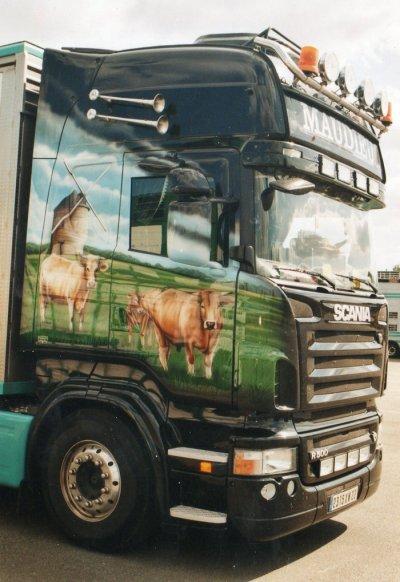 Ce côté nous montre des bovins, une campagne paisible.