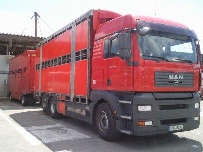 Un camion remorque Man TGA 26-480 de la Loire, il est clean.