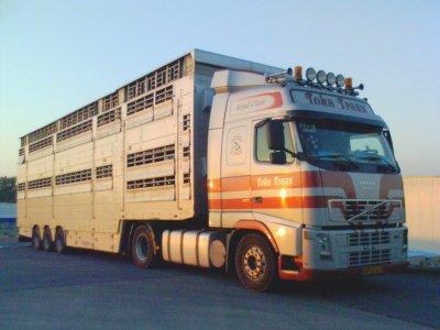 Un Volvo FH12 460 des transports Toka Trans (NL).