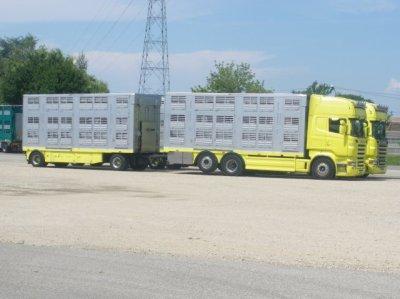 Autotrasporti Testa & C, des italiens situés à Cuneo.