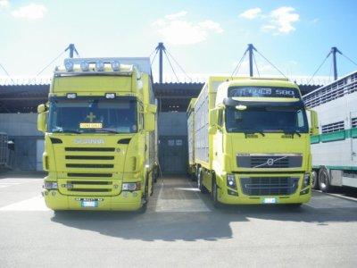 Le transporteur italien Testa. Superbe leur nouveau Volvo FH16 580.