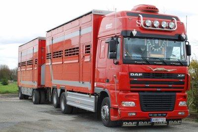 Quelques photos de Steven d'un camion des transports Sotrabo (61).