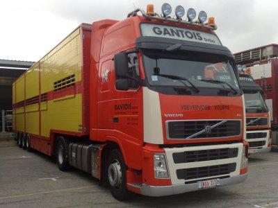 Volvo FH13 480 de Gantois, il est installé à Veurne (B). Belles couleurs.