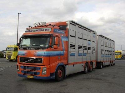Volvo FH16 550 du transporteur Rinus Van Beers (NL).