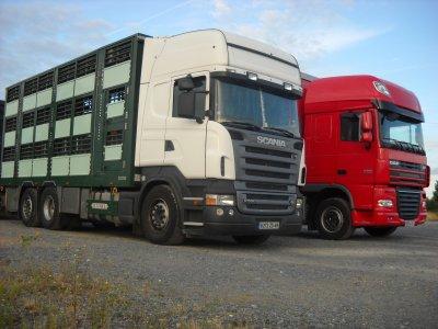 Deux camions remorques au repos sur un parking.