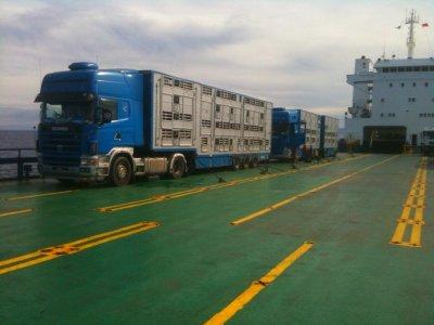 Les camions sur le ferry, en route vers un pays du Maghreb.