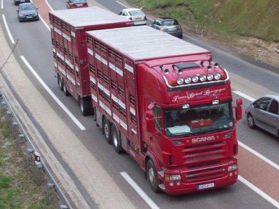 Un camion ayant servi de base pour réaliser une maquette.