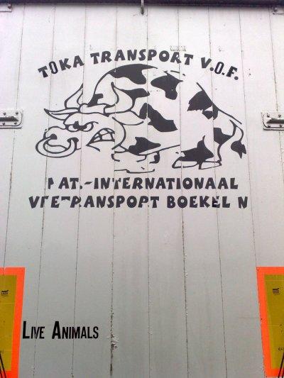 Un hollandais, Toka Trans. Le dessin sur le pont impressionne.
