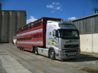 Détour par le port de Sète (34) où tous les acteurs européens du bétail coopèrent.