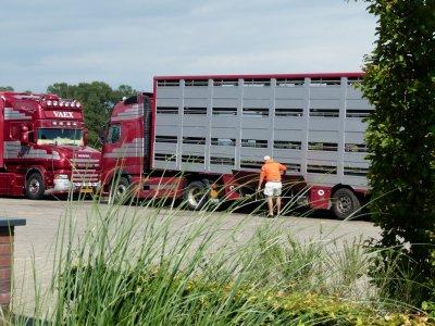 On entame la seconde partie de la visite chez VAEX avec ce Volvo FH16 600.