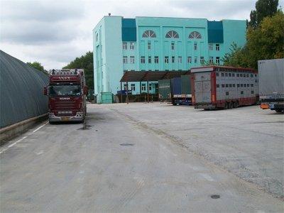 Un transport de vaches à lait, destination le nord de la Russie.