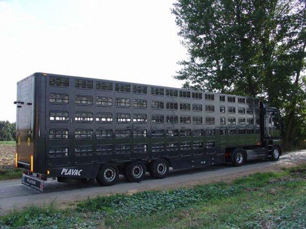 J'expose maintenant de nombreuses fabrications du carrossier polonais Plavac.