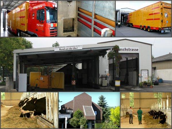 Hefter Spedition (D) propose différents services liés au transport des animaux.
