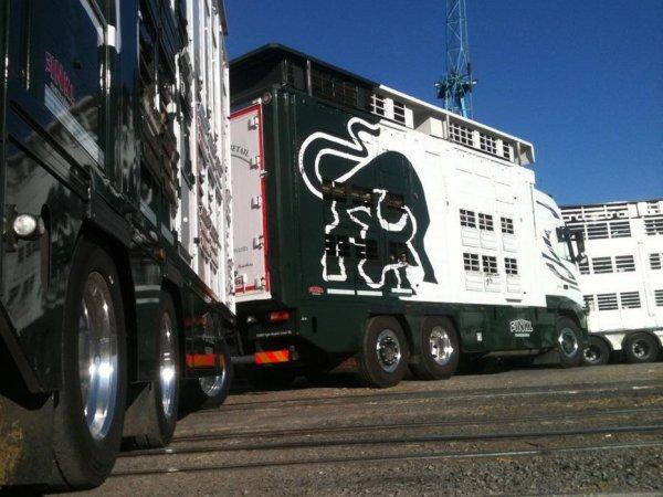 Autre série de photos du camion appartenant à Franche-Comté Bétail (70).