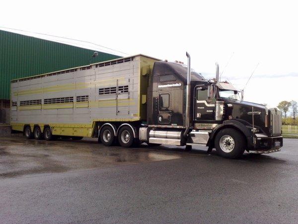 Kenworth T 800 B conduit par David, le patron des transports Sugier (43).