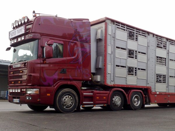 Scania 6x2 164L 480 des transports Baudouin de Caulnes (22).