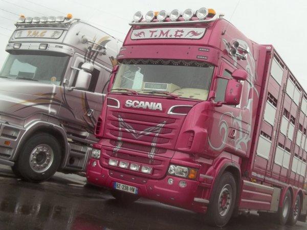 Scania R730 réalisé selon les désirs de Christophe Malpart (22).