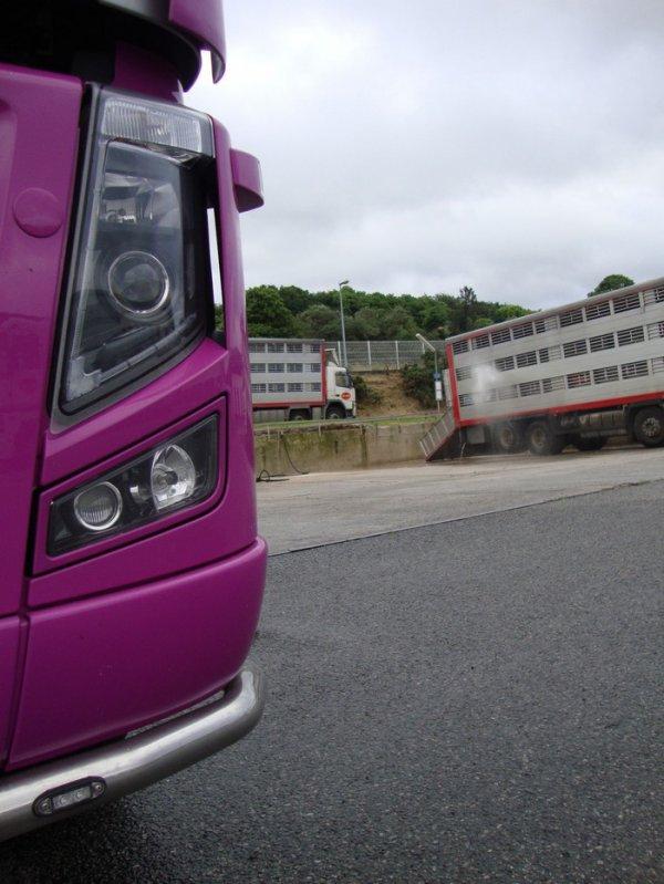 Volvo FH16 600 des transports Inizan situés à Plouescat (29).
