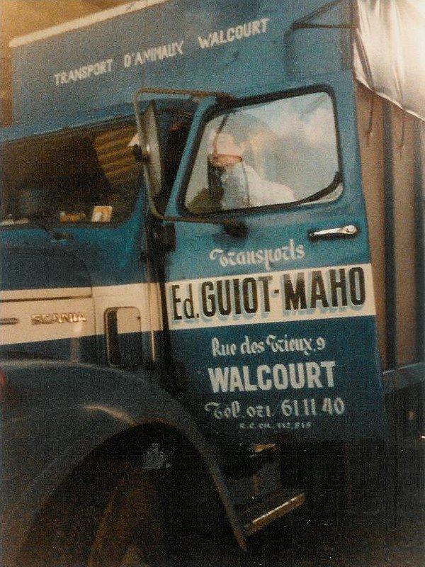 Guiot et Maho, 50 ans d'expérience dans le transport du vivant en Belgique.