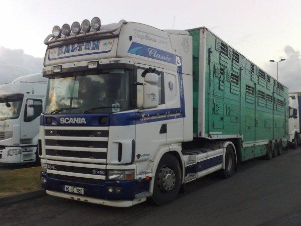 Scania 164L 480 du transporteur irlandais Dalton de Longford.