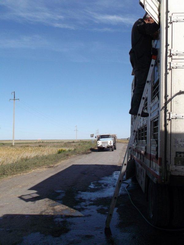 Un arrêt dans la campagne kazakhe aura été l'instant d'une belle leçon de vie.