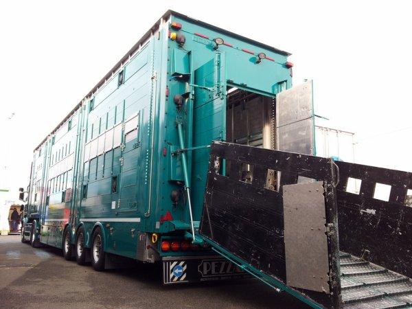 J'ai bien évidemment photographié le Scania R560 des transports Philippon (42).